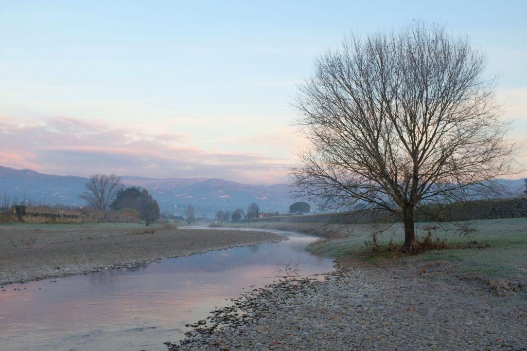 Argine del fiume Ombrone a Pistoia Fujifilm X100T